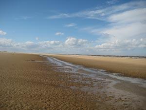 Beach_329